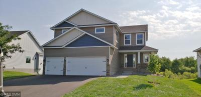 Lakeville Single Family Home For Sale: 19770 Idealic Avenue