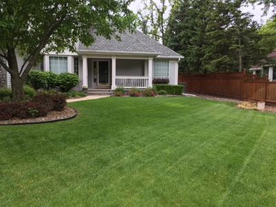 Shoreview Single Family Home For Sale: 4405 Snail Lake Boulevard