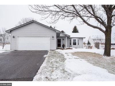 Lakeville Single Family Home For Sale: 17513 Gage Avenue