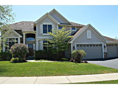 Maple Grove Single Family Home For Sale: 16949 73rd Place N