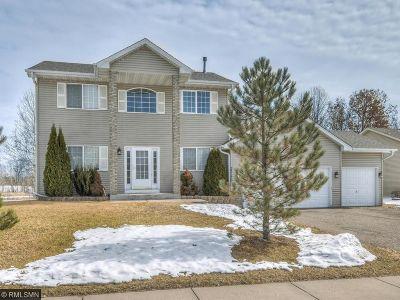 Saint Francis Single Family Home For Sale: 23179 Arrowhead Street NW