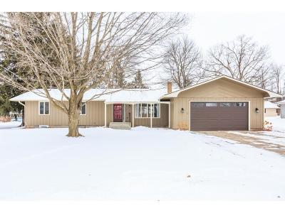 Pine City Single Family Home For Sale: 1110 8th Street SW