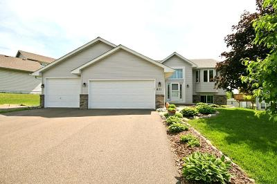 Watertown Single Family Home Contingent: 871 Quail Court