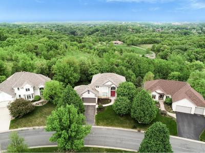 Eagan Single Family Home For Sale: 3918 Donegal Way