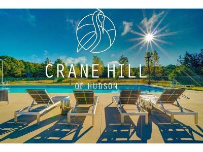 Hudson Residential Lots & Land For Sale: Lot 9 Crane Hill Of Hudson