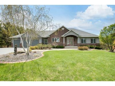 Chisago County, Washington County Single Family Home For Sale: 25582 E Comfort Drive