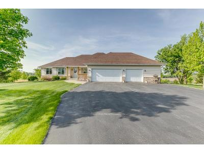 Prior Lake Single Family Home For Sale: 21186 Clemwood Drive