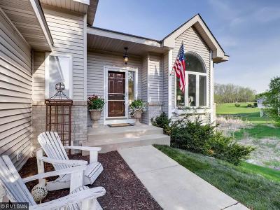 Minnetrista Single Family Home For Sale: 1155 Marina Drive