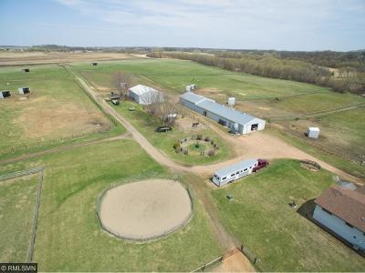 Scott County Single Family Home For Sale: 2466 E 260th Street