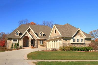 Eden Prairie Single Family Home For Sale: 9530 Sky Lane