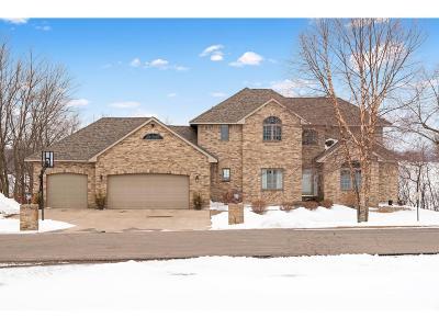 Cokato Single Family Home For Sale: 3275 Newcomb Avenue SW