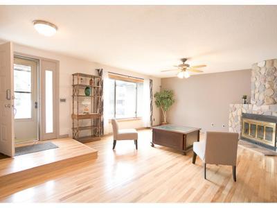 Eagan Single Family Home For Sale: 765 Elrene Court