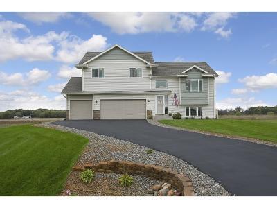 Oak Grove Single Family Home For Sale: 21476 Goldenrod Street NW