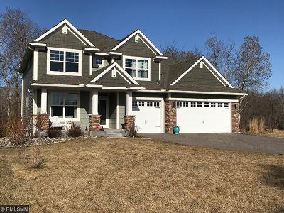 Blaine Single Family Home For Sale: 12796 Xylite Street NE