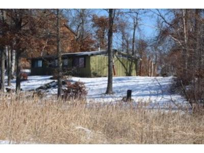 Brainerd Single Family Home For Sale: 19925 See Gull Road
