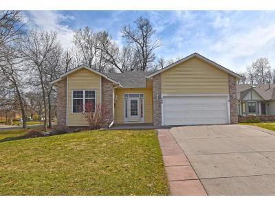 Mahtomedi Single Family Home For Sale: 354 E Avenue Circle