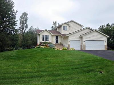Ham Lake Single Family Home For Sale: 15334 Ghia Street NE