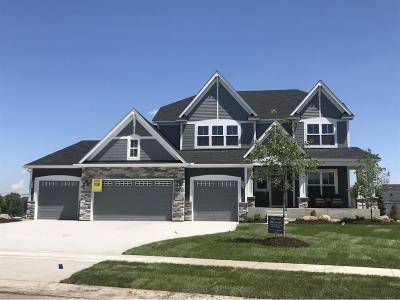 Maple Grove Single Family Home For Sale: 7600 Urbandale Lane N