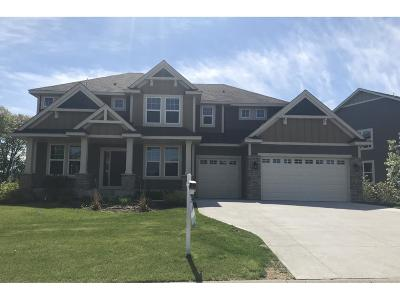 Medina Single Family Home For Sale: 3009 Basswood Road