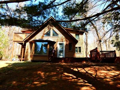 Pine City Single Family Home For Sale: 26762 Crooked River Road