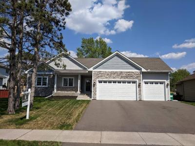 Coon Rapids Single Family Home For Sale: 12841 Avocet Street NW
