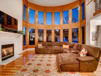 Chanhassen Single Family Home For Sale: 370 W 86th Street