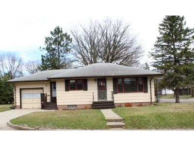 Staples Single Family Home For Sale: 721 Michigan Avenue NE