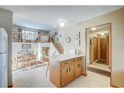 North Branch Single Family Home Contingent: 38072 Feaski Circle