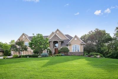 Lakeville Single Family Home For Sale: 21067 France Boulevard