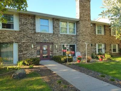 Hennepin County Condo/Townhouse For Sale: 1029 Smetana Road #7