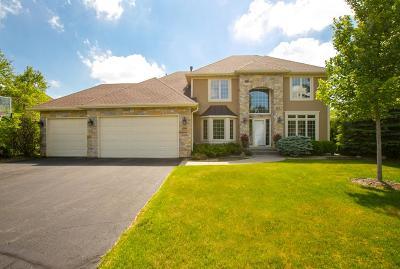 Eden Prairie Single Family Home For Sale: 6988 Howard Lane