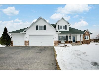 East Bethel Single Family Home For Sale: 1098 212th Avenue NE