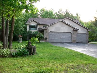 Pine City Single Family Home For Sale: 18769 Woodland Acres
