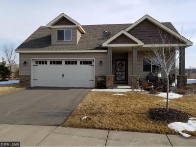 Elk River Condo/Townhouse For Sale: 10159 180th Lane NW