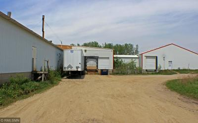 Litchfield Twp MN Commercial For Sale: $400,000