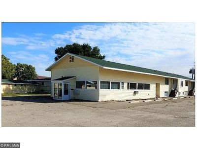 Paynesville MN Commercial For Sale: $600,000
