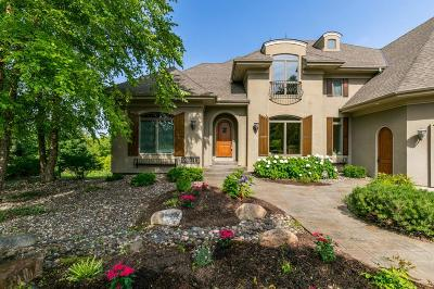 Lakeville Single Family Home For Sale: 21016 France Boulevard