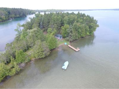 Itasca County Single Family Home For Sale: 33499 Birch Island Lane