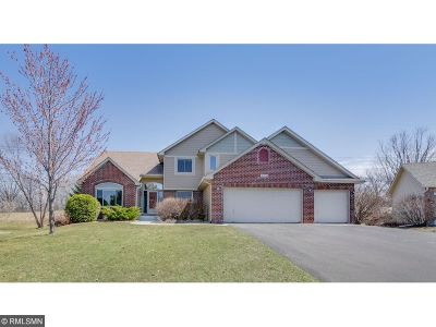 Inver Grove Heights Single Family Home For Sale: 10774 Amherst Court