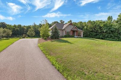 Stearns County Single Family Home For Sale: 38092 Brockway Hollow Drive