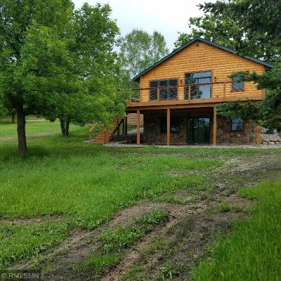 Aitkin Single Family Home For Sale: 36825 304th Lane