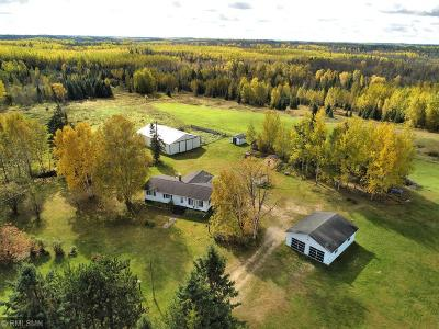 Itasca County Single Family Home For Sale: 29595 County Road 340