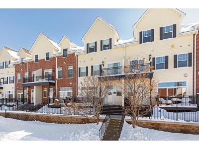 Saint Paul Condo/Townhouse For Sale: 1591 Niles Avenue #8