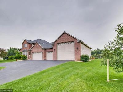 Ham Lake Single Family Home For Sale: 3627 147th Avenue NE