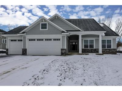 Lakeville Single Family Home For Sale: 8094 201st Street W