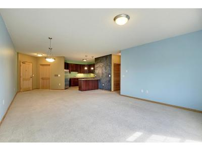 Minneapolis Condo/Townhouse For Sale: 619 8th Street SE #415