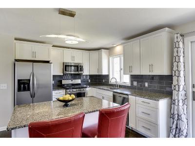 Buffalo Single Family Home For Sale: 1002 Ridgehaven Circle