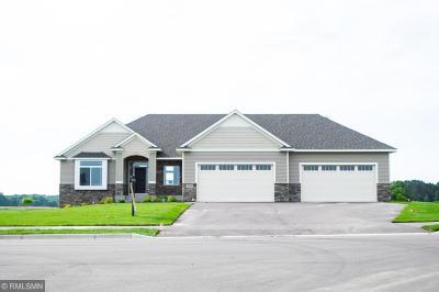 Anoka County, Carver County, Chisago County, Dakota County, Hennepin County, Ramsey County, Sherburne County, Washington County, Wright County Single Family Home For Sale: 2804 153rd Avenue NE