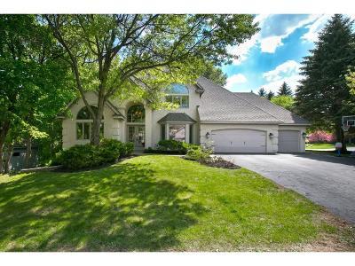 Eden Prairie Single Family Home For Sale: 11651 Landing Road