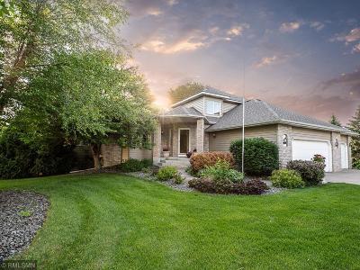 Ham Lake Single Family Home For Sale: 1110 142nd Avenue NE